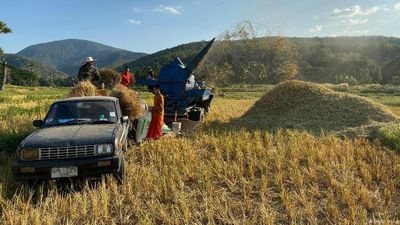 Thailand: Turning straw into gold