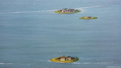 Is the Wadden Sea dying in the era of climate change?