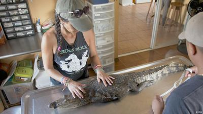 Belize: Lobbying for crocodiles