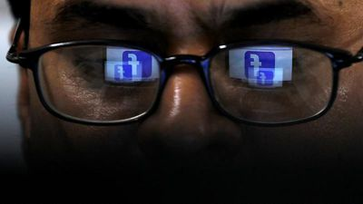 Raw Politics in full: Biodiversity danger and Facebook vs misinformation ahead of EU elections