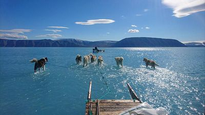 The viral image that illustrates the scale of melting ice in Greenland