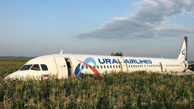 Russian plane makes emergency landing after birdstrike near Moscow, no casualties reported