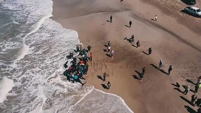 Watch: Rescuers save Orcas stranded on Argentine beach