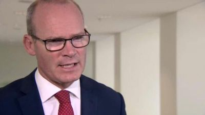 Simon Coveney tells Euronews the UK 'needs to move to facilitate deal'