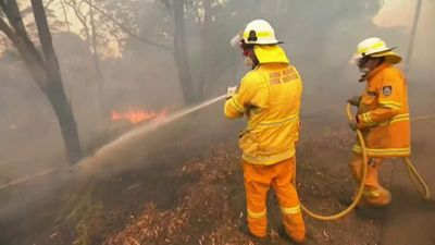 Only rain will put out Australia's raging bushfires, fire chiefs say