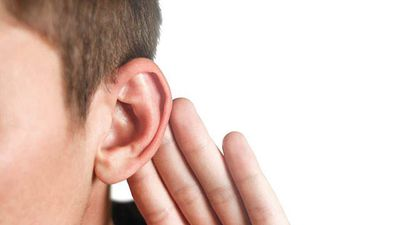 Cochlear posts rise in profits, increases interim dividend