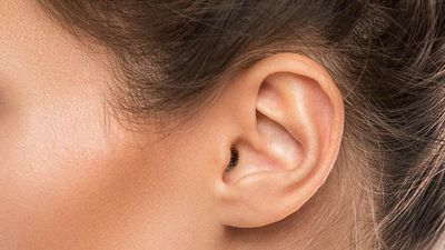Cochlear announces the launch of the Nucleus Profile Plus Series implant