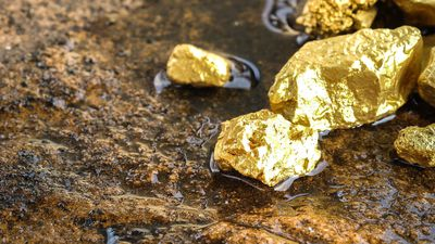 Medusa Mining (ASX:MML) will not proceed to next phase with Ellenkay Gold