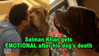 Salman Khan gets EMOTIONAL after his dog's death