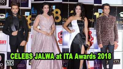 Divyanka Tripathi to Sunny Leone: CELEBS JALWA at ITA Awards 2018