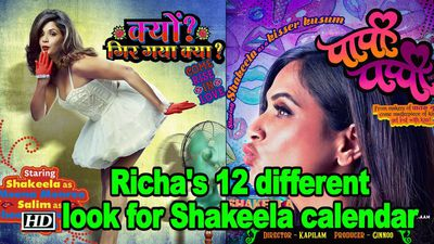 Richa Chadha's 12 different look for Shakeela calendar