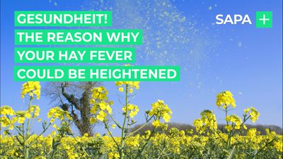 Gesundheit! The reason why your hay fever could be heightened