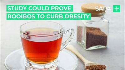A study could prove that rooibos assists weight loss