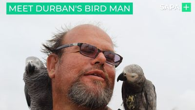 Tom van Niekerk is Durban's Birdman