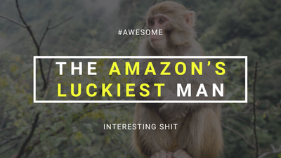Man Lost in Amazon Survives--Thanks to Monkeys