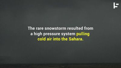 Desert (Snow) Storm: A Snowy Day in the Sahara