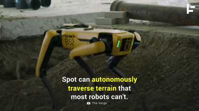 This Robot Can Autonomously Traverse the Roughest Terrain