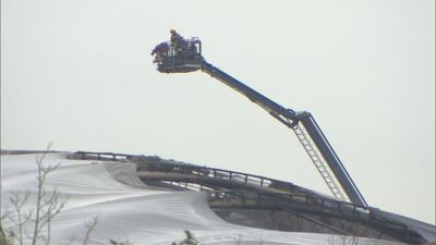 All animals and visitors safe after fire at Chester Zoo