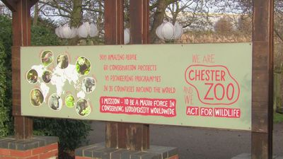 Thousands raised after Chester Zoo fire