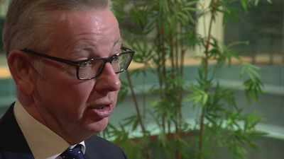 Gove: Neither remain nor no-deal Brexit captures public mood