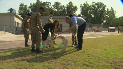 Duke and Duchess of Cambridge meet puppies in Pakistan