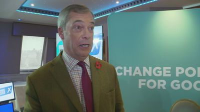 Nigel Farage: 'Tories pose as the Eurosceptics'