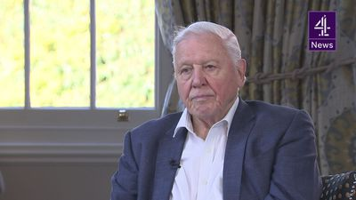 David Attenborough: Climate change will cause 'civil unrest'