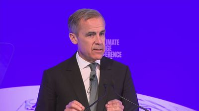 Carney: Private finance role in reaching net zero 'critical'