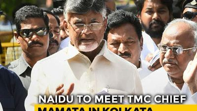 Chandrababu Naidu's Alliance Plan On Track, To Meet Mamata Banerjee Today