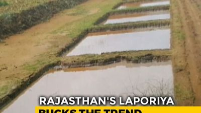 How One Rajasthan Village Still Has Water Even After A Long, Dry Summer
