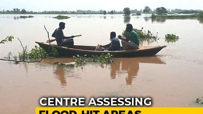 Worst Floods In Punjab In 30 Years, Centre Sends Team To Assess Damage