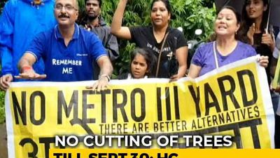 No Trees To Be Cut In Mumbai's Aarey Colony Till September 30, Court Says Amid Protests