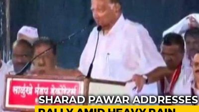 Drenched In Rain, Sharad Pawar Addresses Poll Rally In Satara