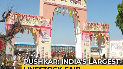 Sponsored: Pushkar Fair: A Mix Of Colours And Culture