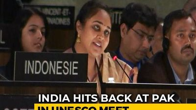 "Pakistan Has ""DNA Of Terrorism"": India's Reply On Kashmir At UNESCO"