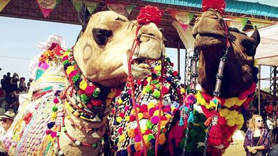 Sponsored: The Camel Beauty Contest At The Pushkar Fair