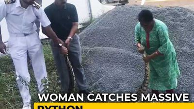 In Hair-Raising Video, Woman Captures 20Kg Python In Kochi