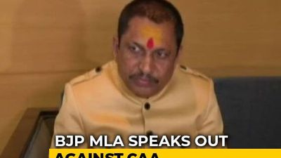 Country Shouldn't Be Divided Over Religion: BJP MLA On Citizenship Law
