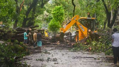 Mumbai Safe, No Damage To COVID Quarantine Centres: Civic Official On Cyclone