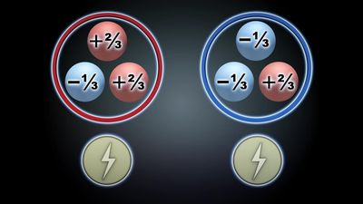 Why physicists are interested in the top quark