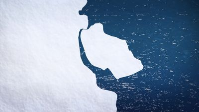 Massive iceberg breaks from Eastern Antarctica