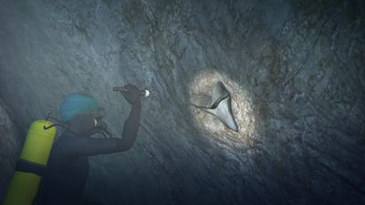 Fossilized Megalodon tooth found in flooded cavern in Mexico