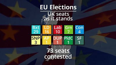 What were the results of the European elections in the UK?