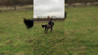 Woman defies doctors and gets back on horse after cancer surgery