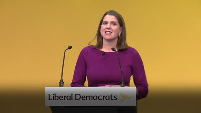 Jo Swinson: David Cameron cannot be forgiven for calling Brexit referendum