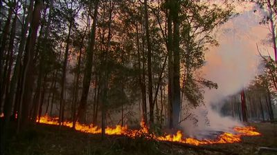 Wildfires burn on Australia's east coast at prime minister comforts victims