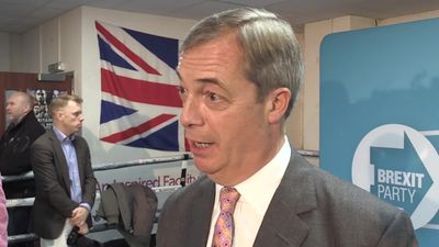 Nigel Farage: I would want to see Tory manifesto before voting for them