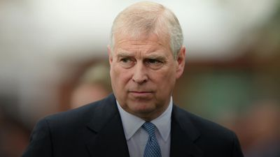 Prince Andrew in profile