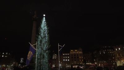 Trafalgar Square Christmas tree lights switched on