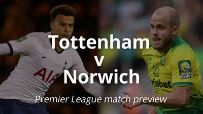 Premier League match preview: Tottenham v Norwich